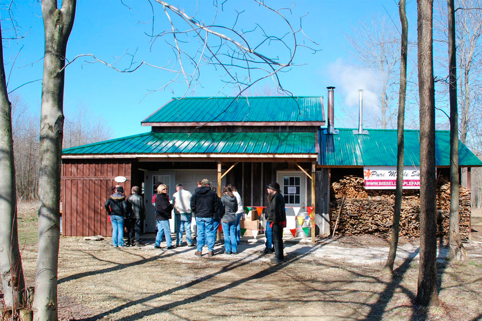 Bissell Maple Farm