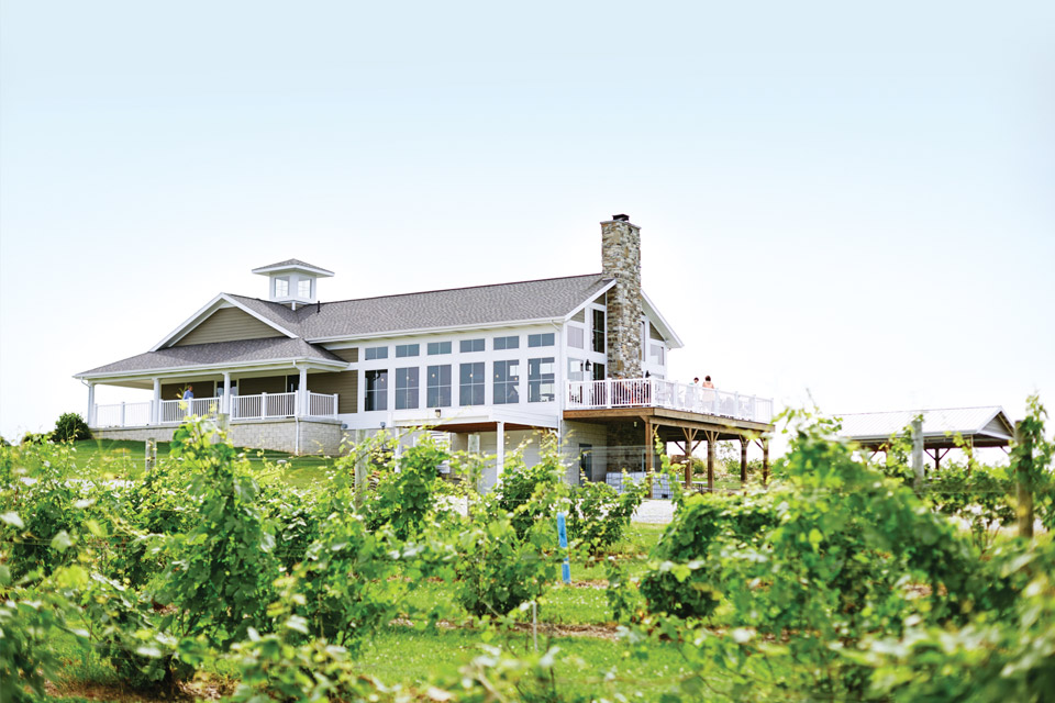 Quarry Hill Winery 2015