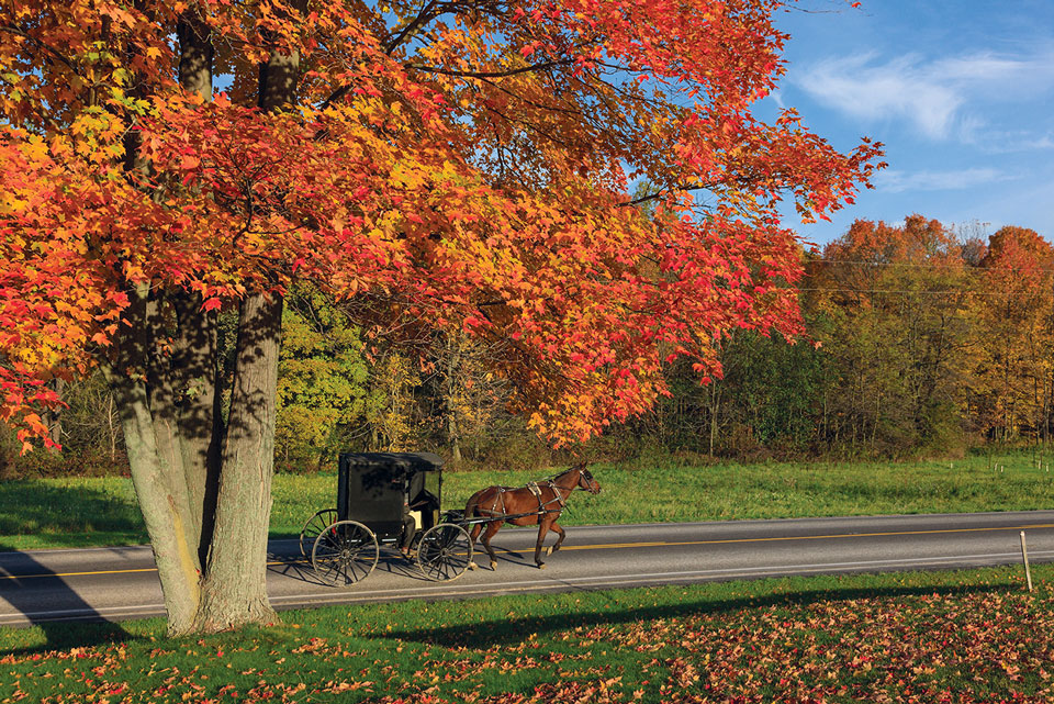 AmishCountry