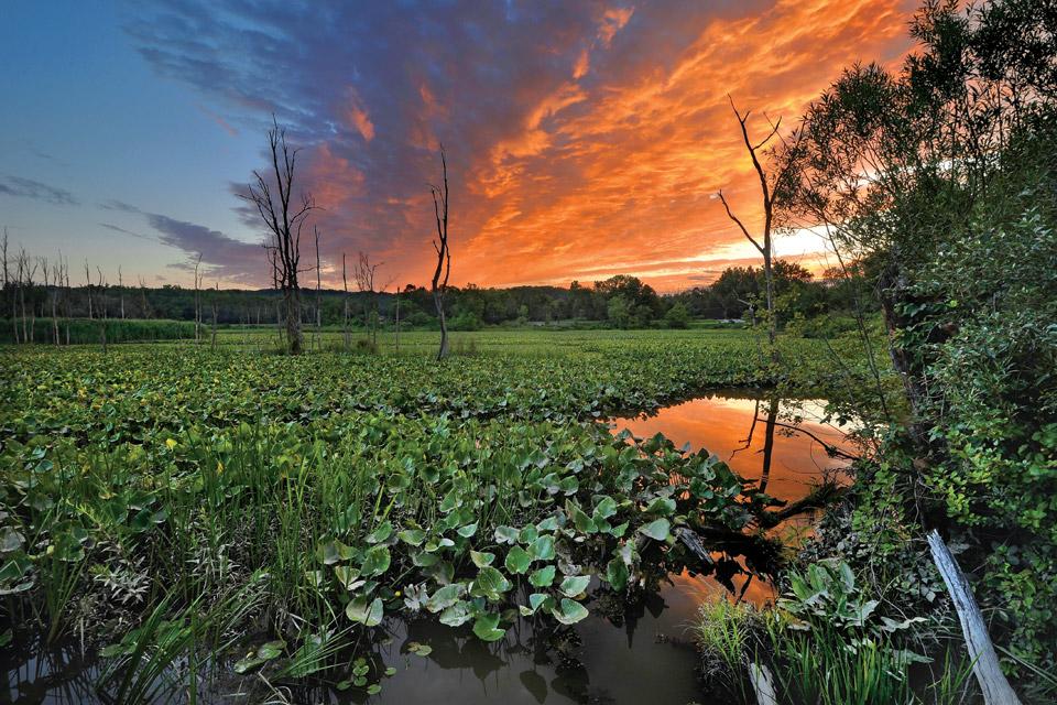 travel-natl-parks-cvnp-beaver-marsh