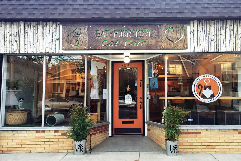 digest-cat-cafe-exterior