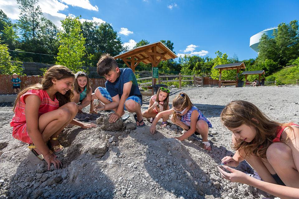 Kids-Adv-Fossil1