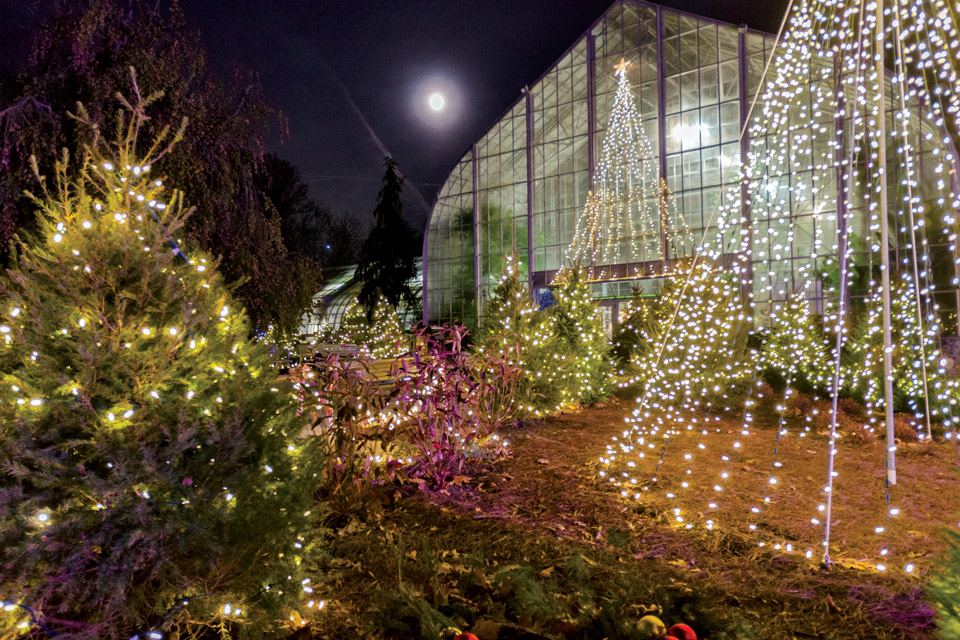 Holiday-Show-at-Krohn-Conservatory